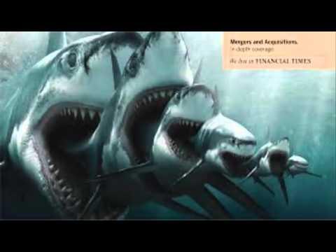 Historia del megalodon