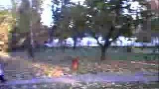 Koluszki - park jesienią