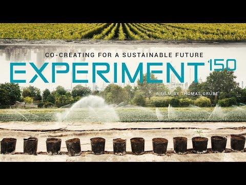 EXPERIMENT 150 – Co-creating for a sustainable future. Ein Film von Thomas Grube