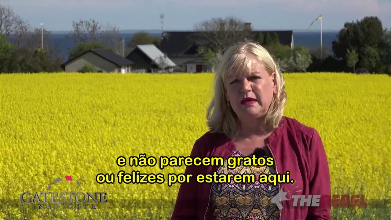 Image result for Suécia: Epidemia de Estupros Cometidos Por Imigrantes | Ingrid Carlqvist [Legendado PT-BR]
