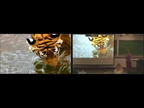 World Wildlife Fund: Preparing for the Global 'Infrastructure Tsunami' (Dean's Seminar Series)