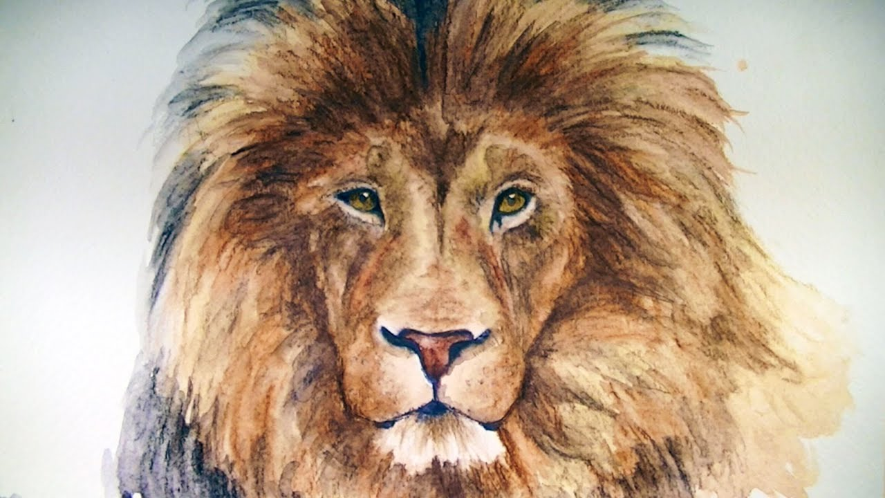 How to Draw a Lion  Graphitint Pencils  YouTube