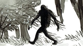 Sasquatch of the Driftless Forests