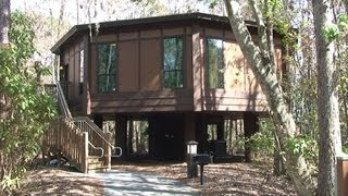 Treehouse Villas at Disney