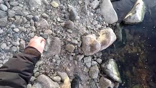 Карелия Рыбалка Река Осень Межсезонье Ожидание не оправдались