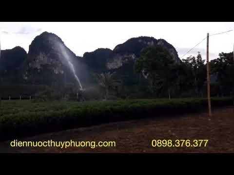 Béc AX21 - Béc tưới bán kính 20 mét bằng đồng cứu hạn cây chè tại Nghệ An
