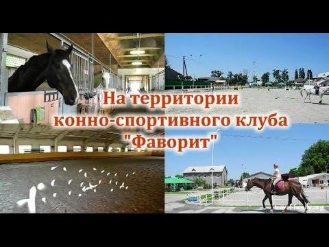 Где отдохнуть недалеко от Киева: на территории конно-спортивного клуба Фаворит