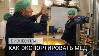 Как экспортировать мед. Бизнес-план