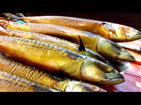 Морская рыба пикша: полезные свойства, как приготовить пикшу