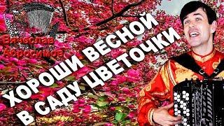ХОРОШИ ВЕСНОЙ В САДУ ЦВЕТОЧКИ под баян - поет Вячеслав Абросимов
