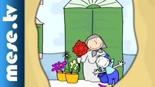 Pintyőke leskelődik - Pintyőke rajzfilmsorozat (mese, rajzfilm gyerekeknek)