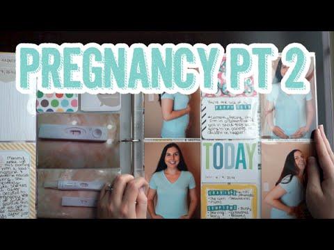495 Pregnancy Project Life Style Scrapbook Album Share Part 2