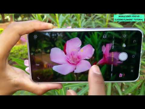 Vivo V9 How to Capture Flowers | by TitBits