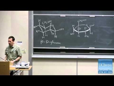 Organic Chemistry 51C. Lecture 16. Introduction to Carbohydrates: Structure and Stereochemistry.