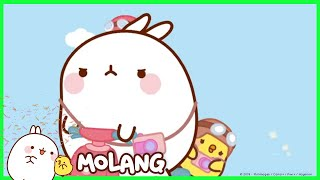 Molang - The Football Player | Cartoon for kids