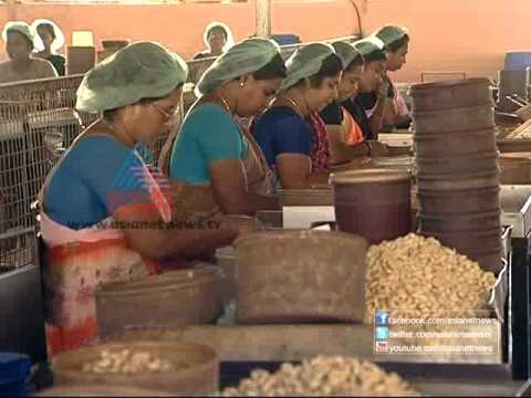 Sthree - Agonies of women cashewnut workers in Kollam