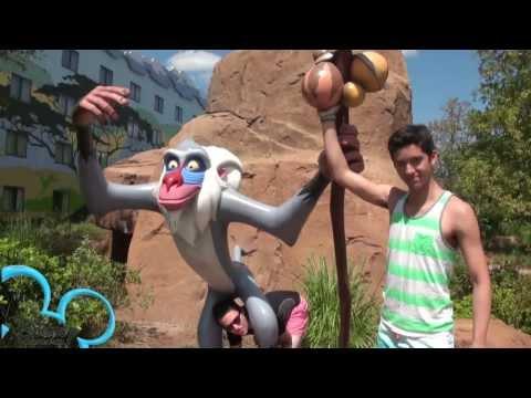 Disney Travel Guide
