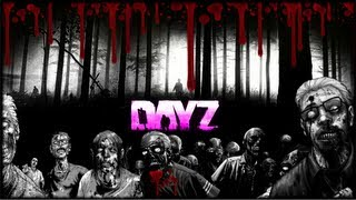 DayZ - How To Maximize and Fix Frame Rate Lag on Arma 2 and Day Z Mod