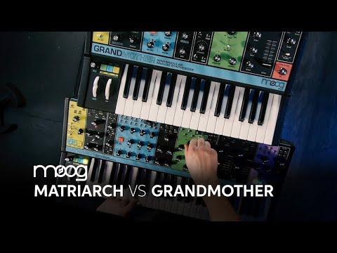 Moog Matriarch Vs Moog Grandmother By Daniel Fisher