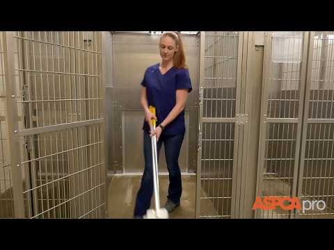 cleaning kennels Appendix v cleaning protocols for public animal shelters cleaning by well trained employees is that builds up in kennels.