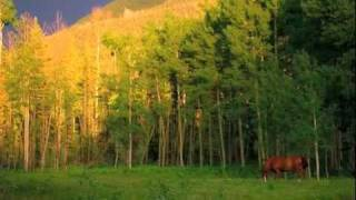 Prajna Mountain Forest Refuge:  Place