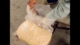 Sesame Milk Rock Candy China Street food video Thumbnail