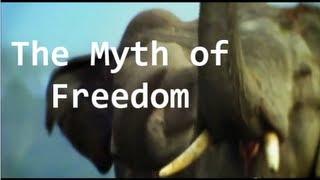 Hamza Tzortzis - The Myth of Freedom