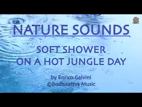 Rainforest - Soft Shower On A Hot Jungle Day 1HOUR - NATURE SOUNDS #9 - Lush Jungle in Costa Rica