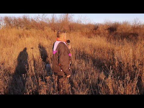 Malva TV: Про зниклі хутори Яроші та Іващенки (Харківщина). Документальний запис розповіді їх мешканців.