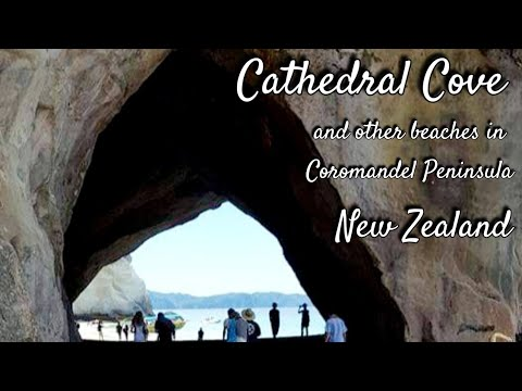 Must Visit Beaches In New Zealand | Cathedral Cove, Coromandel Peninsula