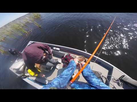Tarpon Lake Bass Fishing