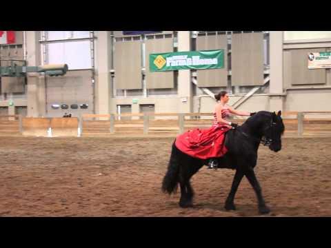 MSU Stallion Expo 2015 Melissa and Prodigy part 1