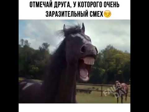 Видео Приколы Юмор Фэйлы Смех Ржака Fail Funny Vines 114