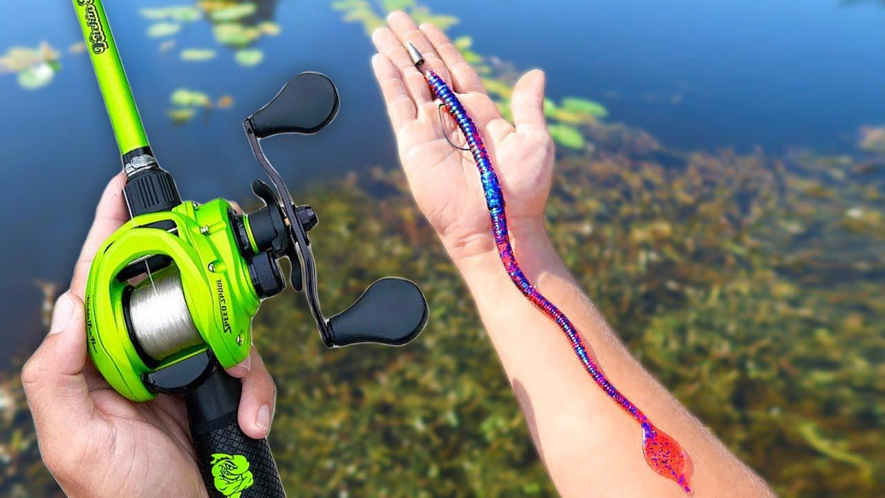 Fishing BIG Worms for BIG Bass (Pond Fishing)