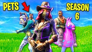 ALL FORTNITE SEASON 6 LEAKS! (Pets CONFIRMED, Rideable Llama, Battle Pass, Skins)