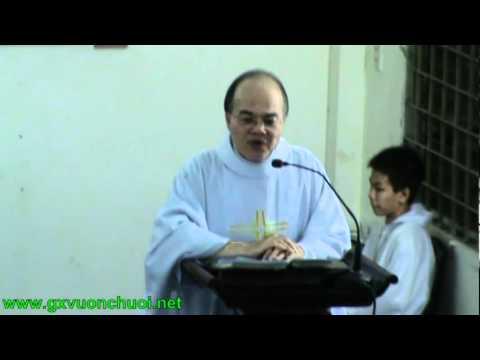 Bài giảng Lễ Thánh Antôn Padua (Bổn mạng Giáo khu Antôn) (13-6-2011)