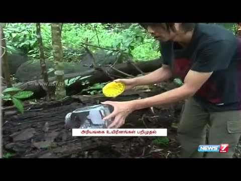 Japanese men arrested for smuggling reptiles in Kerala   India   News7 Tamil