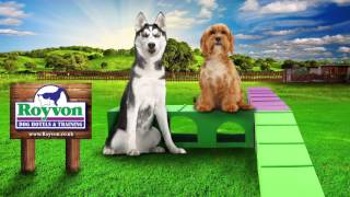 Royvon Dog Training Commercial
