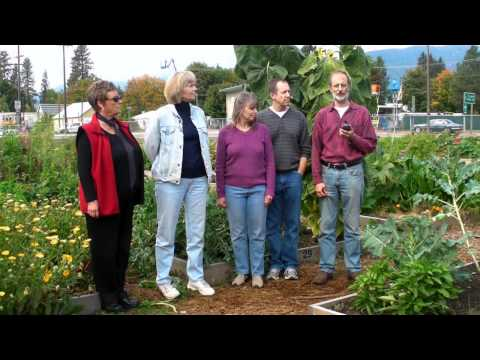 How To Make A Community Garden For Everyone