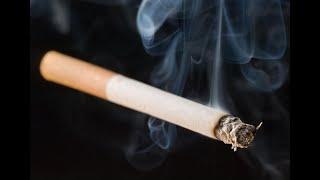 أخبار الصحة - العالم يحقق خطوات متقدمة في محاربة التدخين