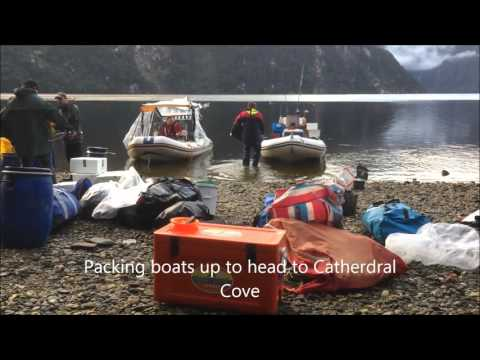 Dusky Sound Adventure - flying boats in
