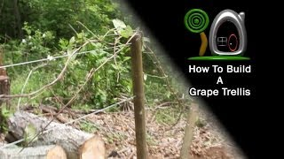 Install A Grape Trellis