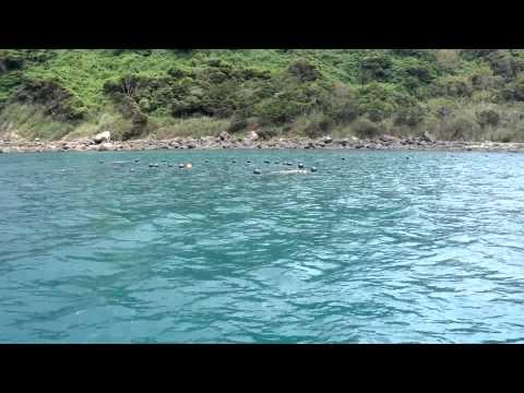 kasasa fishing trip//heimo otoko nukuoro atoll