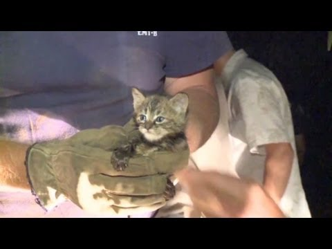 Firefighters use a tiny camera to help rescue a kitten