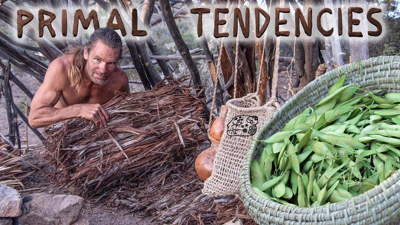 Making a Juniper Mattress and Collecting Wild Beans (episode 08)