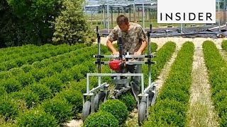 7 Agricultural Inventions You Need In Your Life