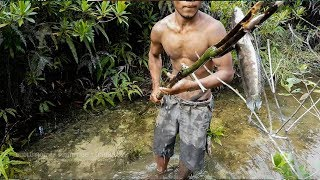 Primitive Technology Wooden Spear Fishing, Make Wooden Spear for Fishing and cook