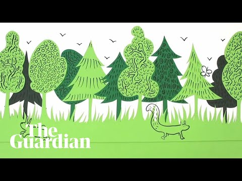 Rewilding made simple | Guardian Animations