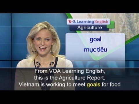 Phát âm chuẩn cùng VOA – Anh ngữ đặc biệt: Vietnam Food Safety (VOA-Ag)