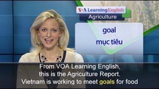 Phát âm chuẩn cùng VOA - Anh ngữ đặc biệt: Vietnam Food Safety (VOA-Ag)